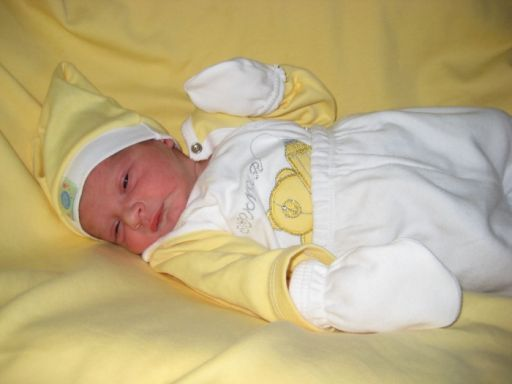 Bebek YILMAZ