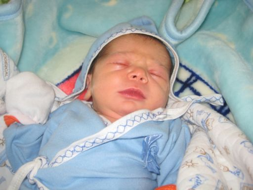 Bebek ÇİFCİBAŞI