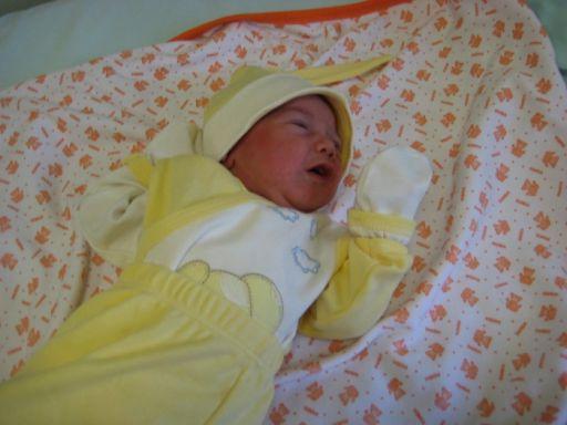 Bebek BİLGİÇ