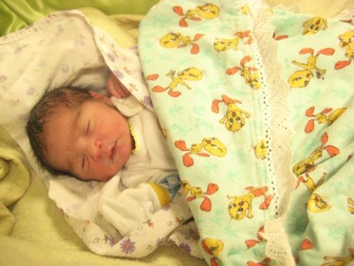 Bebek ŞAHİN