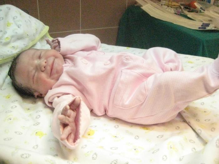 bebek şahin