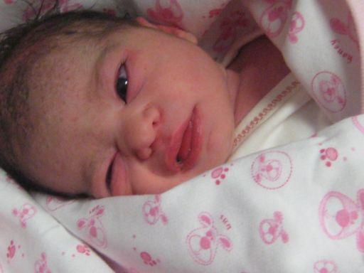 bebek ince