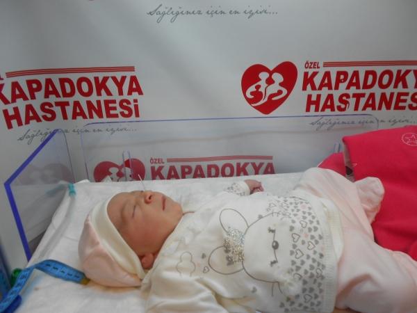 bebek cin