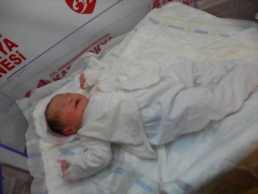 bebek solsun