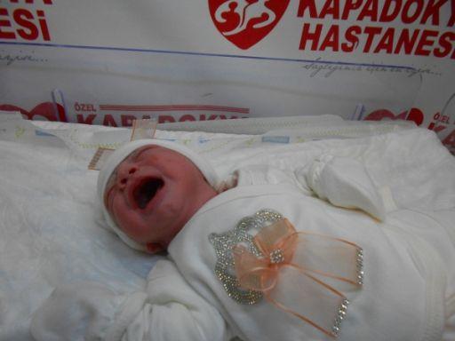 bebek kurtcu