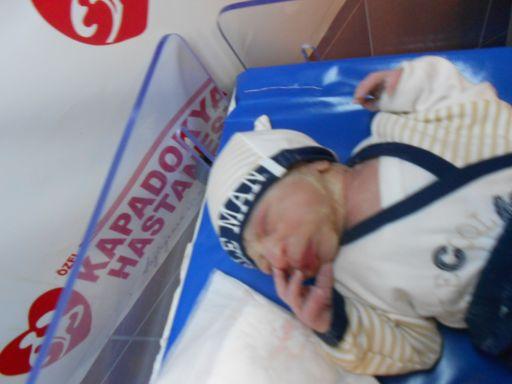 bebek ekinci